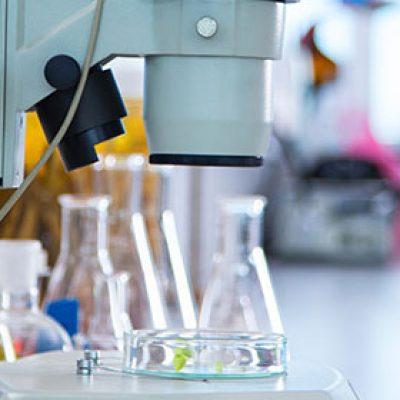reference-laboratories